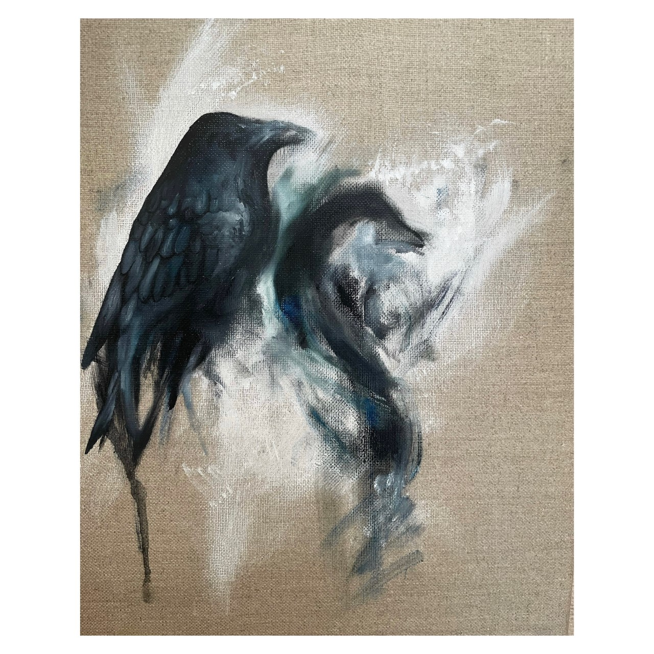 Image for Odin's Ravens